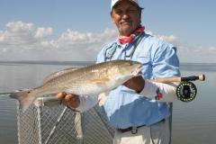 redfish2