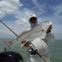 Port Mansfield Texas Saltwater Fishing Report